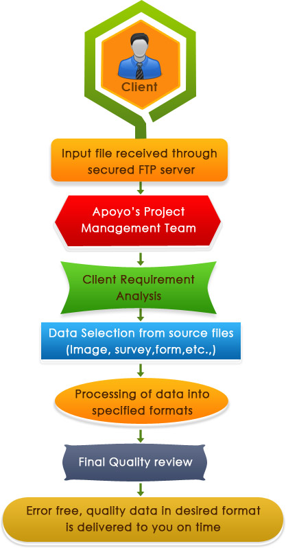 Data Processing Services workflow of Apoyo