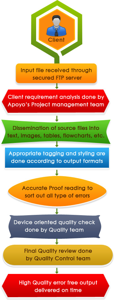 Data entry Services workflow of Apoyo